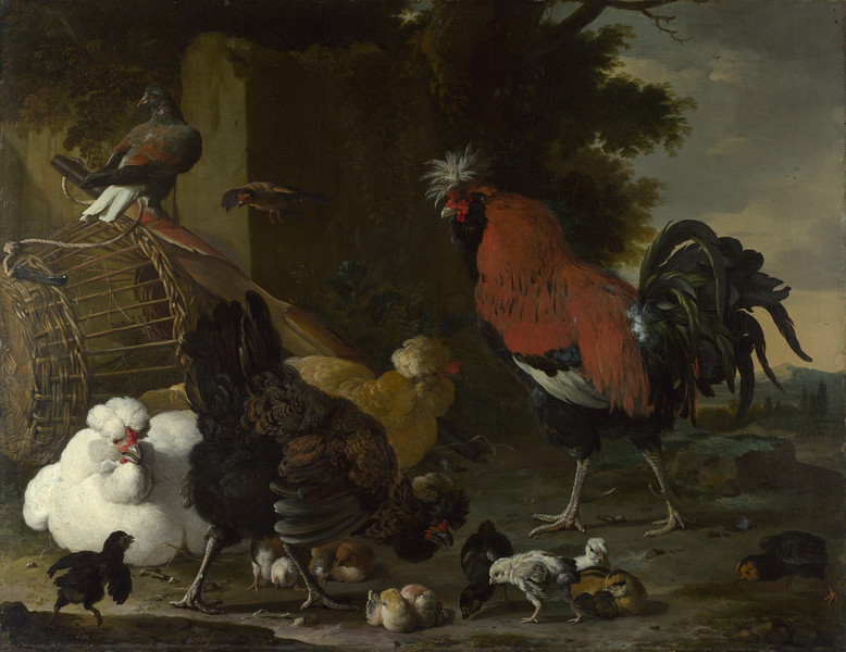 A Cock, Hens and Chicks