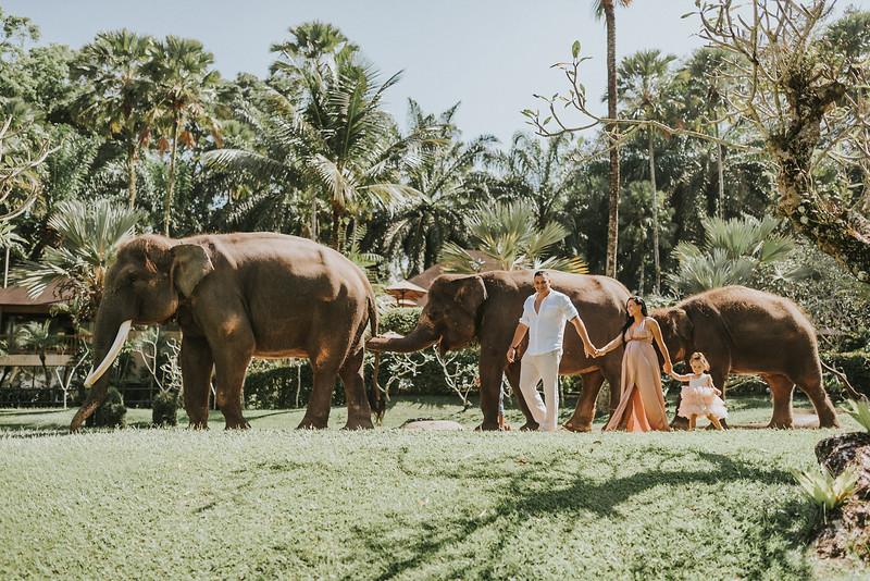 VTV_family_photoshoot_elephants_Bali_ (44).jpg