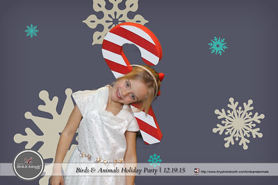 Birds And Animals Holiday Party 2015