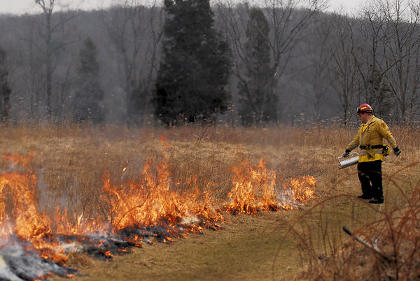 NJFFS CONTROLLED BURNS at KITTATINNY VALLEY STATE PARK 3/16/09