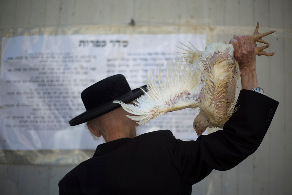 . An Ultra-Orthodox Jewish man swings a chicken over his head as part of the Kaparot ritual in the Ultra-Orthodox city of Bnei Brak near Tel Aviv, Israel,Wednesday, Sept. 11, 2013. Observers believe the ritual transfers one\'s sins from the past year into the chicken, and is performed before the Day of Atonement, Yom Kippur, the holiest day in the Jewish year which starts at sundown Friday. (AP Photo/Ariel Schalit)