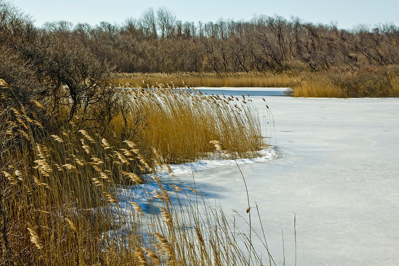 Inlet Pond, Greenport, New York. 02/21/2010