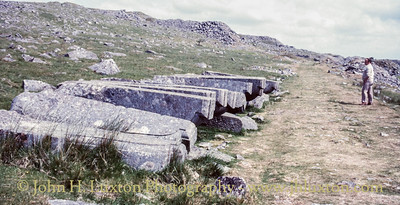 Foggintor and Swell Tor Quarries, Dartmoor, Devon
