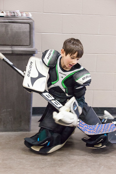 Zev in Net Jan 18, 2015