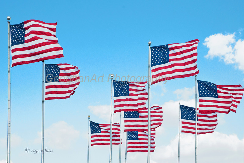 Nov 11_American Flags_0028.jpg