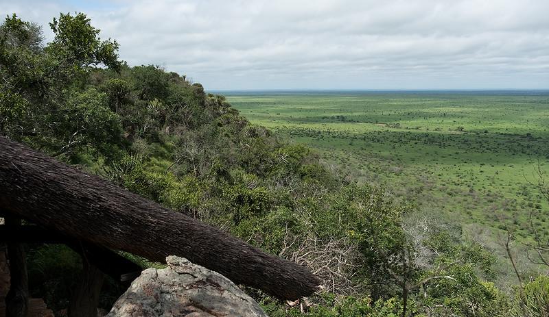 Kruger Plains 1702272118.jpg