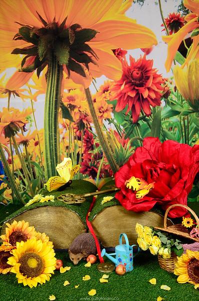 phototheatre-kew gardens-03.jpg