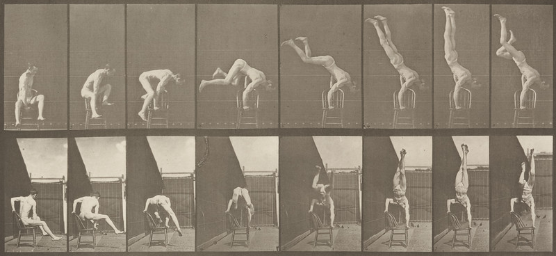 Man in pelvis cloth performing handstand on chair (Animal Locomotion, 1887, plate 373)