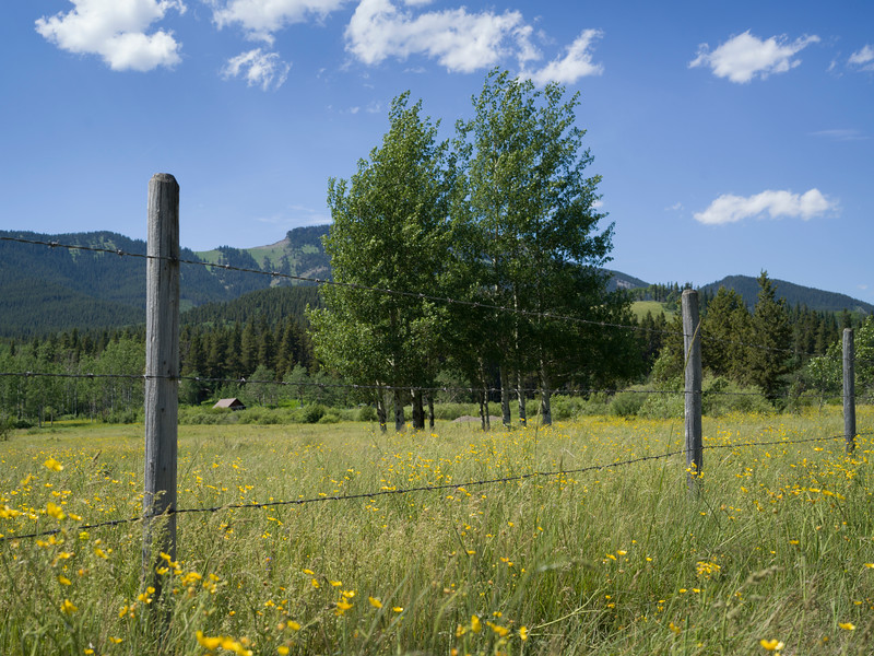 Fence in field with mountains in background, Range Road 35A, Kananaskis Country, Southern Alberta, Alberta, Canada