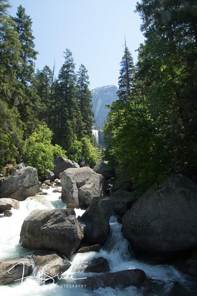 Yosemite 2018 -86.jpg
