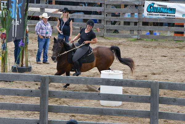 Ottawa Valley Ultimate Horse (Burnstown July 2018)