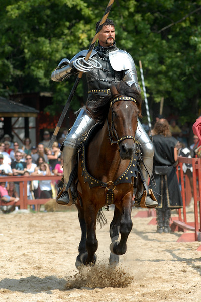 charging knight.jpg