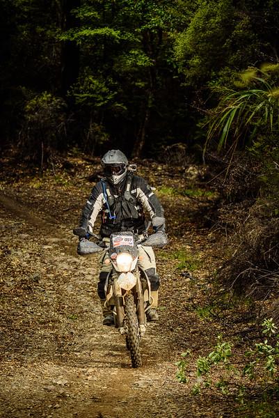 2019 KTM New Zealand Adventure Rallye (1337).jpg