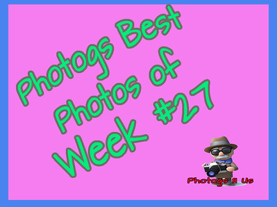 Photogs Best of the Week #27