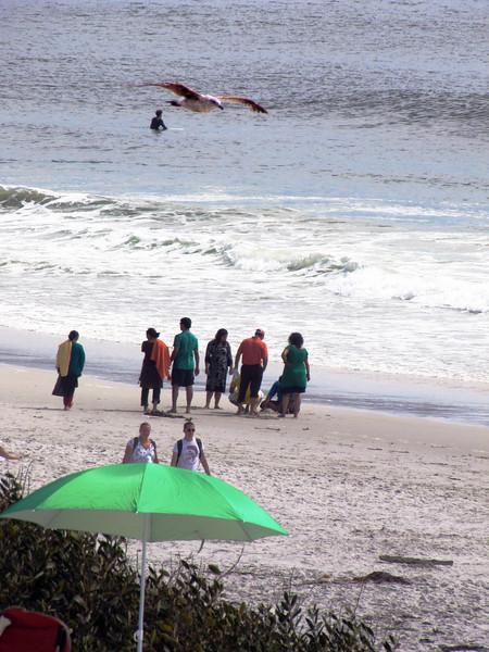 35-Seagull and umbrella_4740.jpg