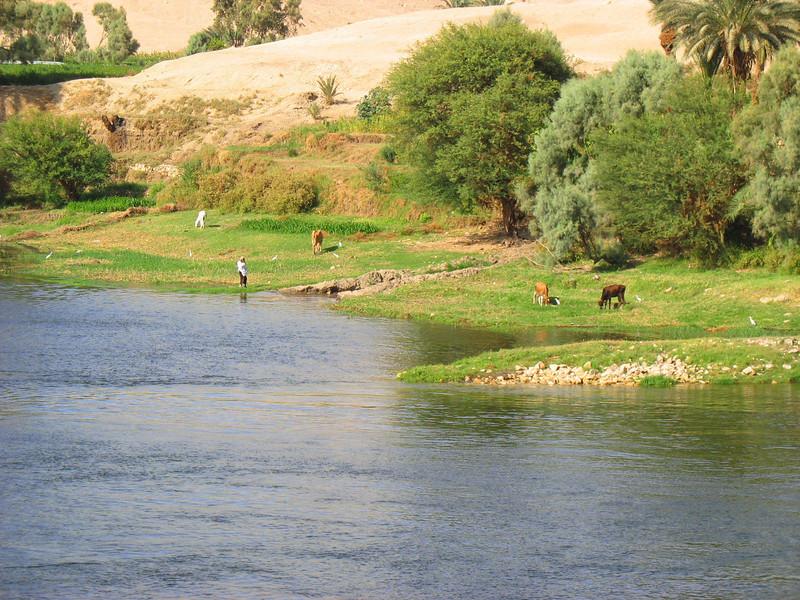 Egypt-433.jpg