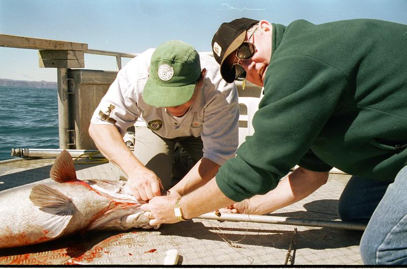 11 mar 01 15a 388 Beans fishing.jpg