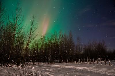 Aurora Borealis November 13 2012