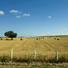 Hay field in Spain in the Iberian countryside between Barca d'Alva, Portugal, and Salamanca, Spain.