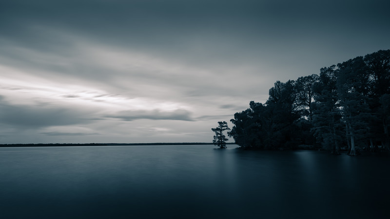 20170519Reelfoot035-Edit-Edit.jpg