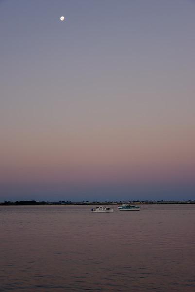 NewZealand-20140313-0250.jpg