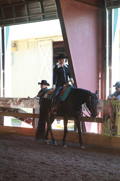 Novice Amateur Western Pleasure