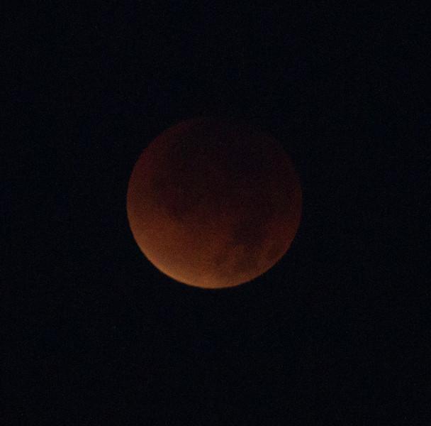 Total Luna Eclipse   Leucadia 2011 12 10 (11 of 11).CR2
