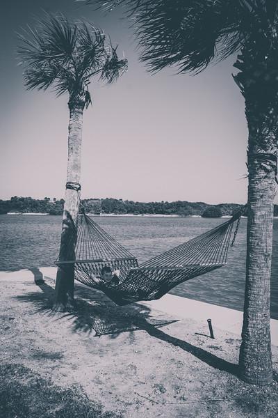 Florida2020-39.jpg