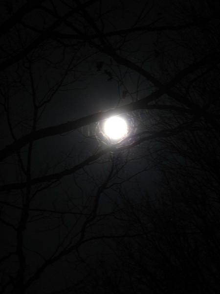 Full moon as shot.JPG