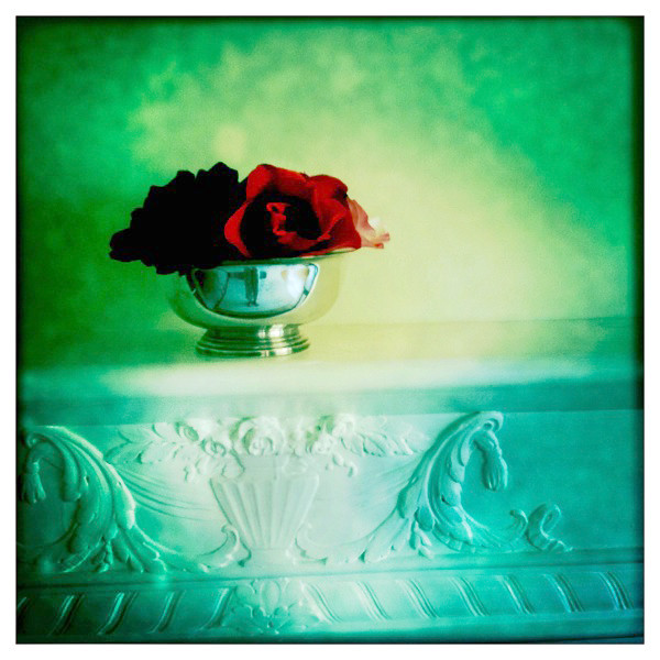 WEB  iPhone roses mantel hipstamatic photo.jpg