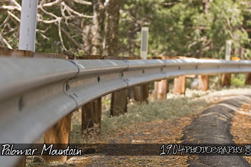 20090606_Palomar Mountain_0326.jpg