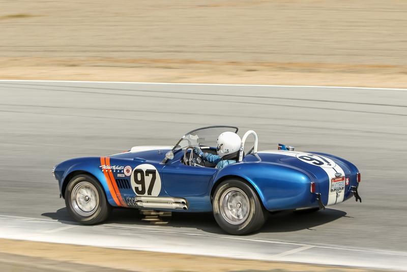 Steve Park, 1962 Cobra