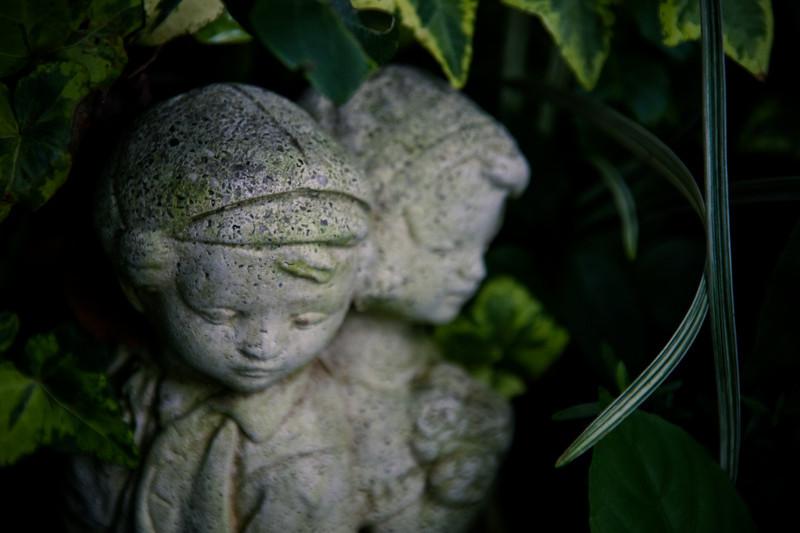 garden (25).jpg