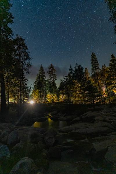 SequoiaNatlPark2019-014.jpg