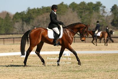 2011-03-13 USEA Horse Trial