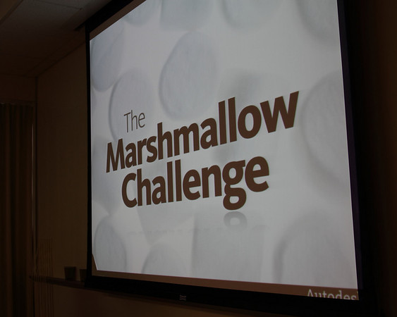 The Marshmallow Challenge 5/21/10