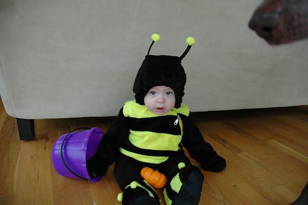 2006 - Halloween - Jake's 1st