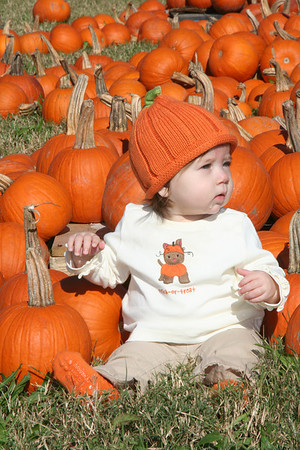 October 2008 - Pumpkin Patch
