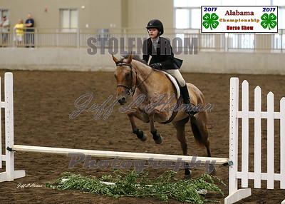 2017 Alabama State Championship Horse Show