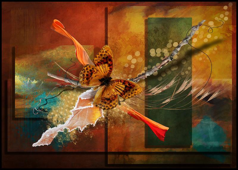 TheButterfly2.jpg