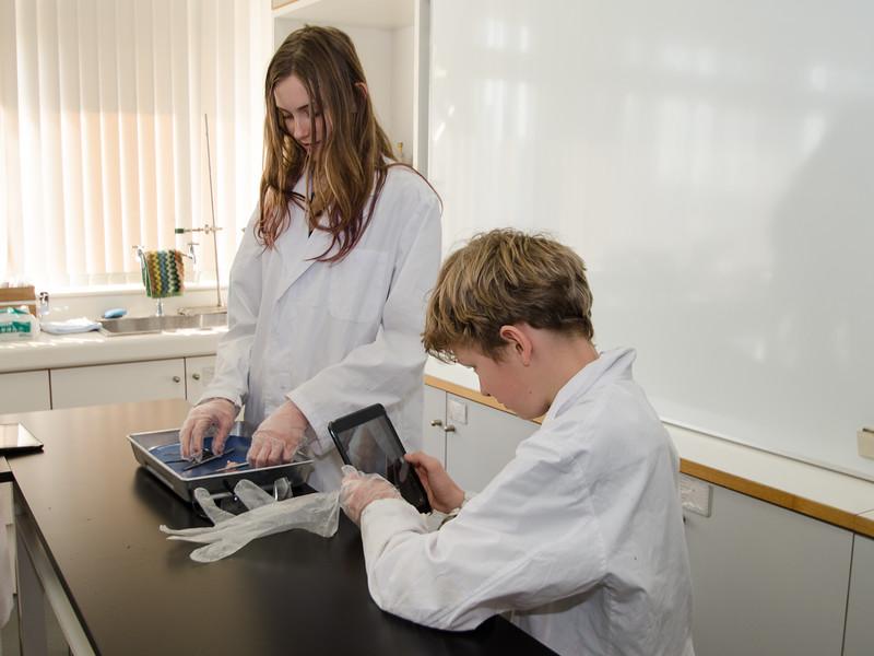 Grade 7 Science-8.jpg