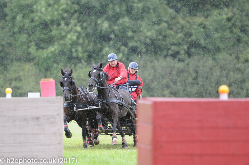 Carriage Driving Championships (09-Sep-17) - Cirencester (D300X)