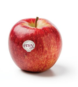 Envy Scilate apple