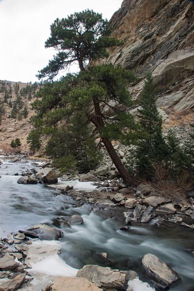 Colorado08-0037.jpg