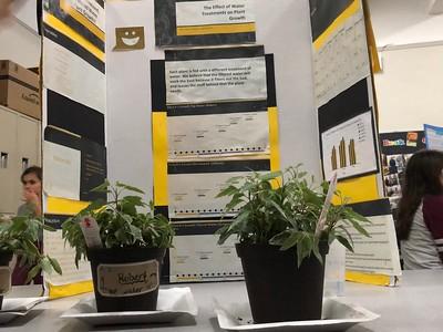 7th Grade Science Expo 2018