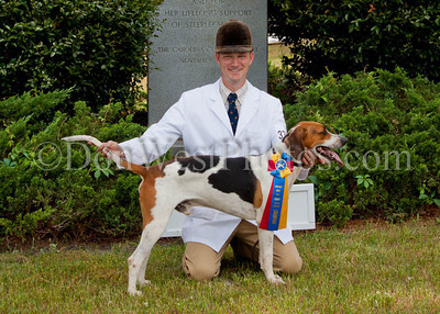 2014 Carolina Hounds Show