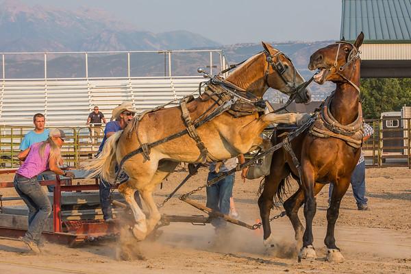 Horse Pull 2017 SL CO Fair