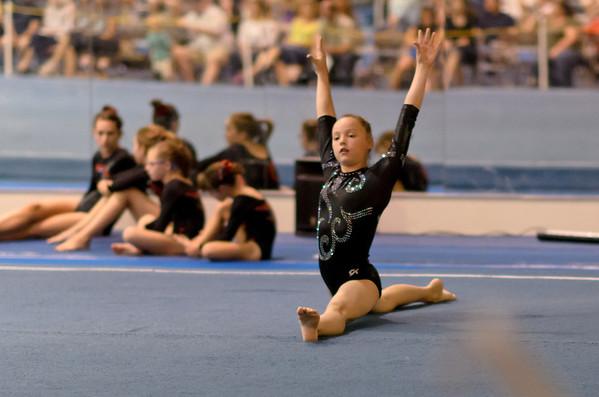 Gymnastics 2011