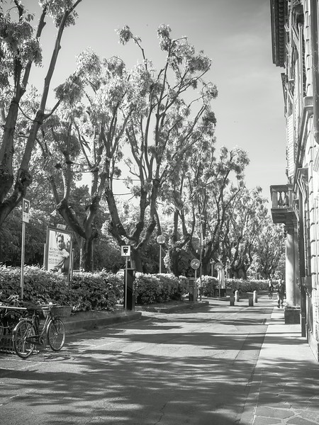 street scene bw.jpg