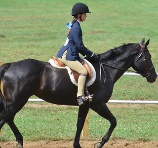 Spencer MA Horse Show - Sept 11, 2016